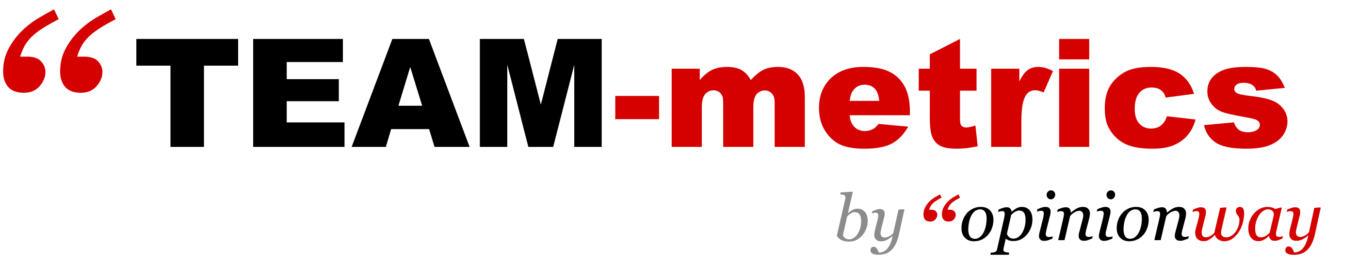Team metrix transparent.png
